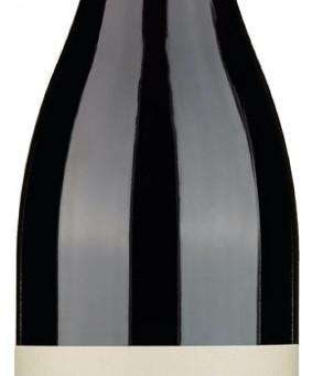 Pinot Noir Barda - 2013