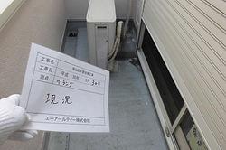 CIMG2554.JPG