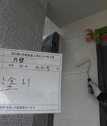 CIMG1767.JPG