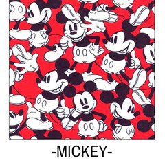 MICKEY SRA SARITA.jpg