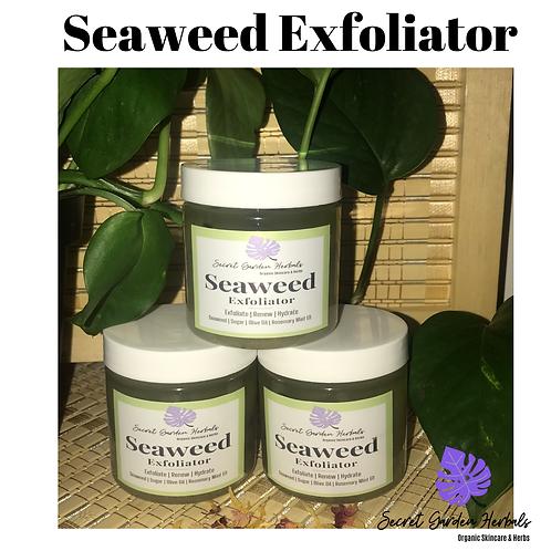Seaweed Exfoliator