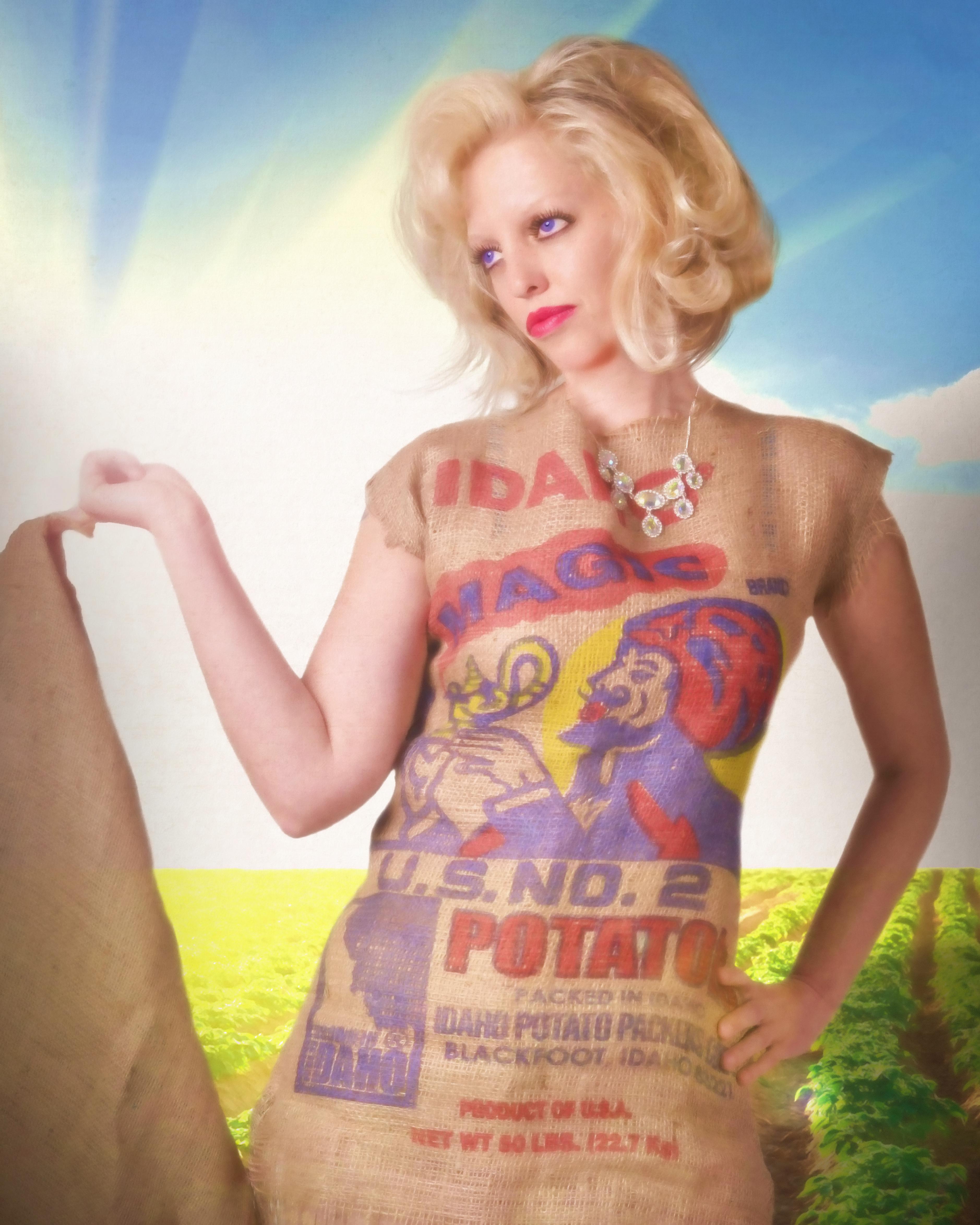 Art Expo Idaho Poster