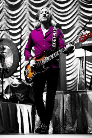ANDY STOLLER (Bass,Guitars)