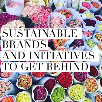 RUG LANE - Sustainable Brands and Initia
