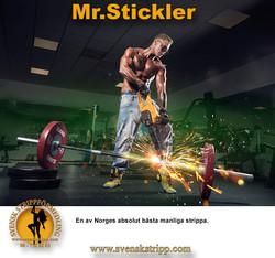 mrstickler