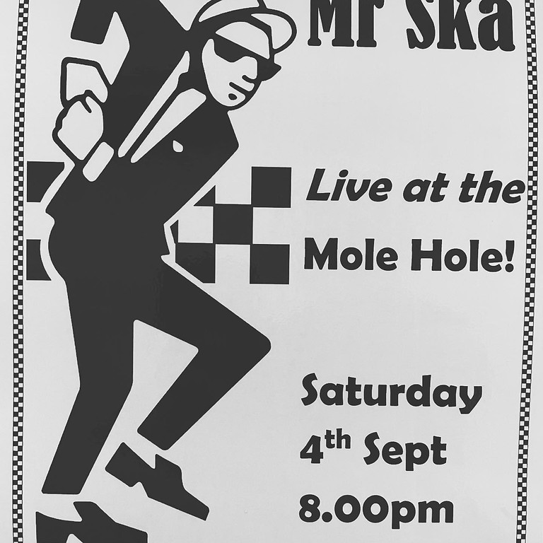 Mr Ska at our 2nd birthday party
