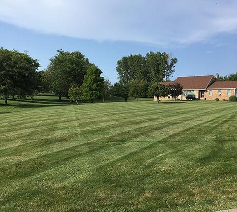 TayloredTurf Lawn Mowing