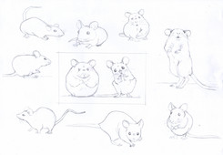 Mouse character studies