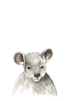 koala watercolour adjusted bigger.jpg