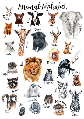 Animal Alphabet Poster different sized a
