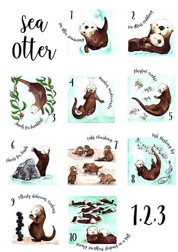 A2 Otter Poster.jpg