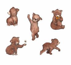 Bear Character Studies