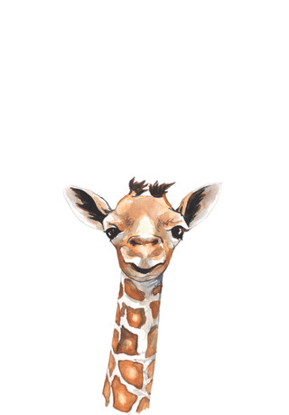 Giraffe Watercolour adjusted.jpg