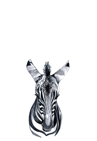 zebra adjusted.jpg