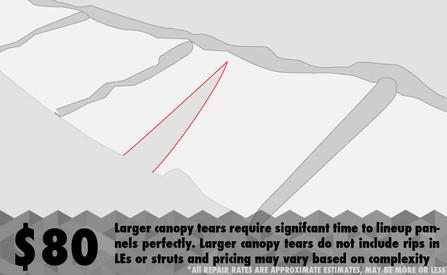repair_canopy_big.jpg