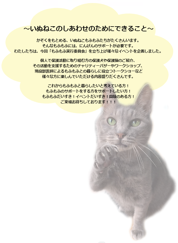 2019-10-20 (1).png