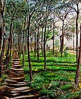 Passeggiata nella pineta di Giovino (2020) cm 40 x 50 - olio su tela