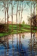 alberi lungo il fiume (1994) - olio su tela - cm 50 x 70