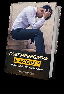 DESEMPREGADO E AGORA.png