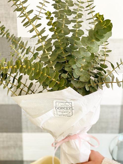 Eucalyptus shower Bunch