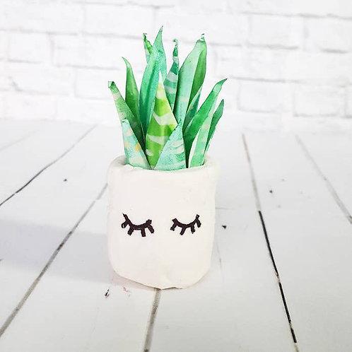 Paper Aloe Succulent
