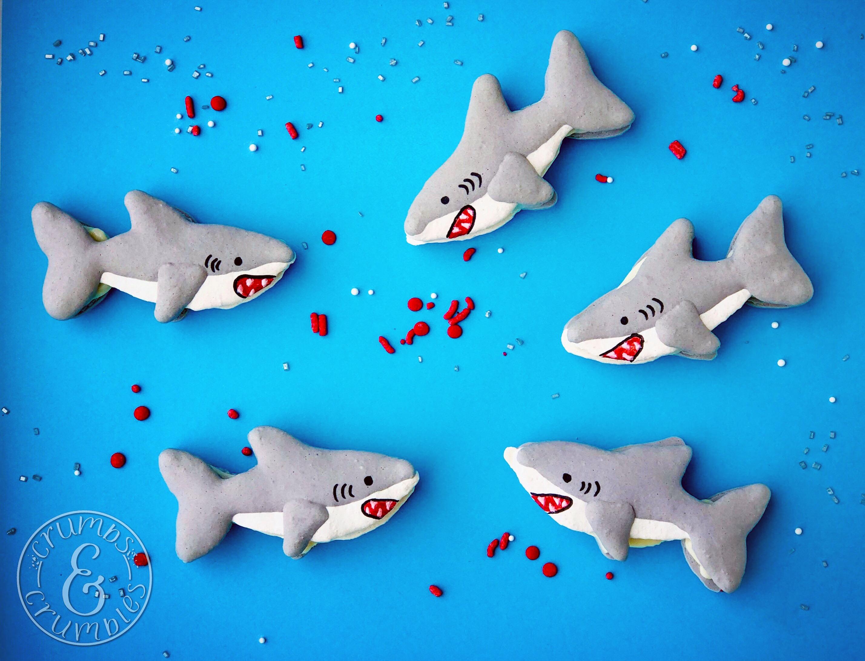 Shark MAcaron