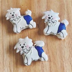 Custom Dog Macarons