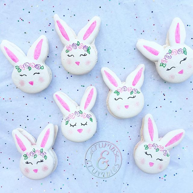 Some bunny wants these