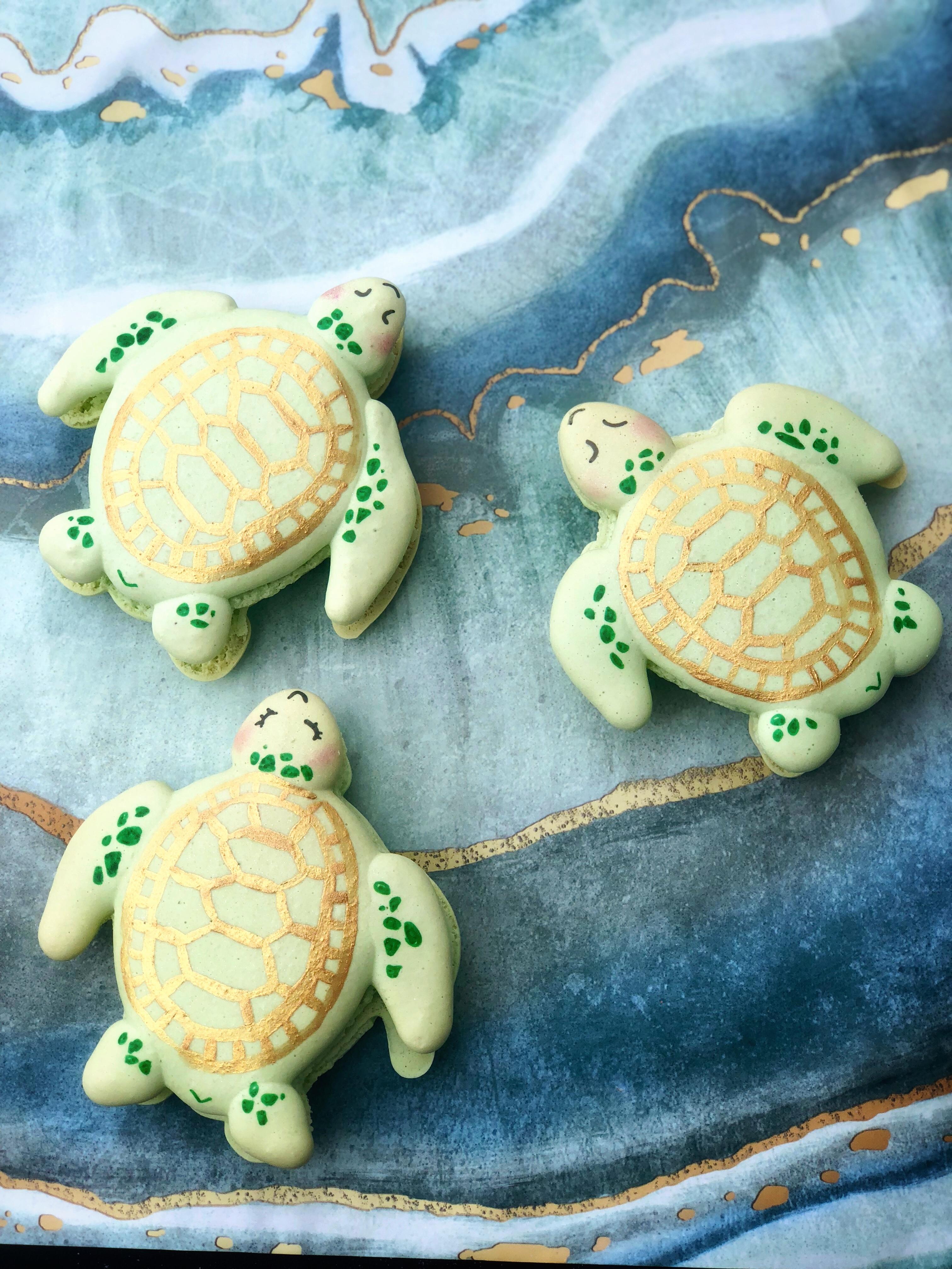 Sea Turtle Macarons