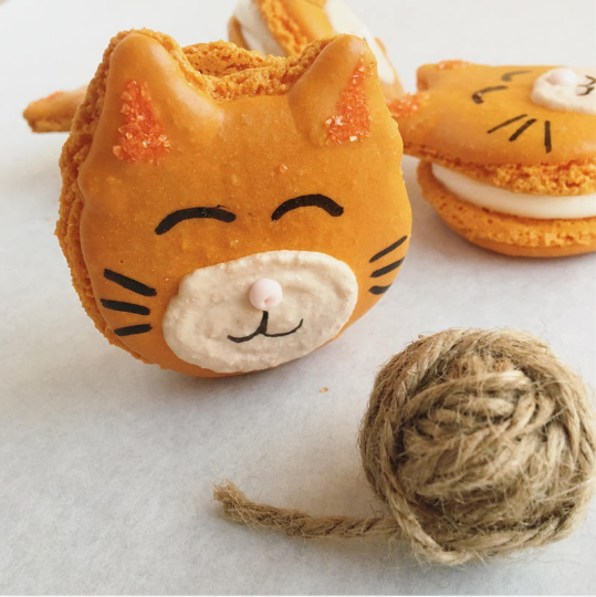 Kitty Macarons