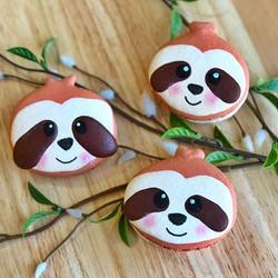 Sloth Macarons
