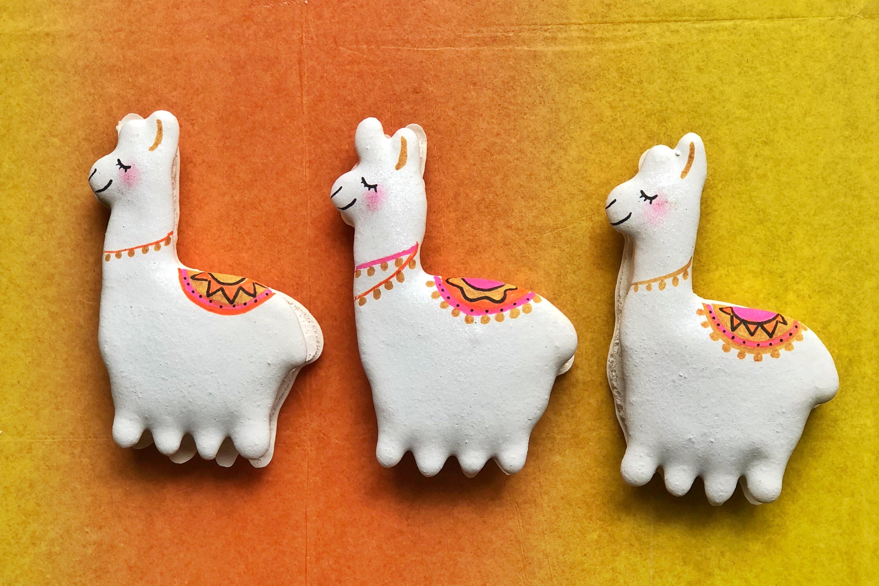 Colorful Llama Macarons