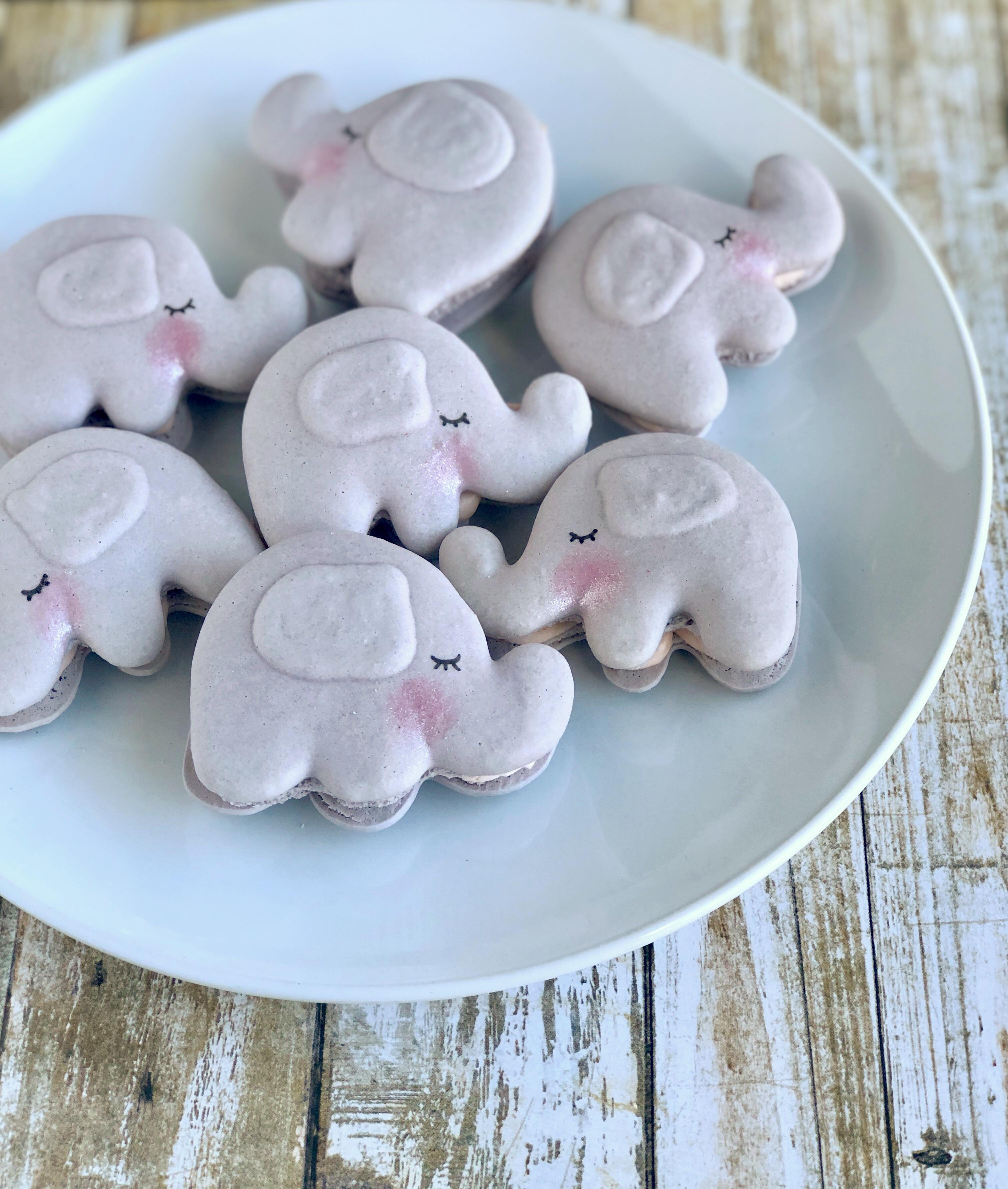 Elephant Macarons