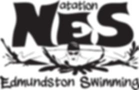 Logo NES.jpg