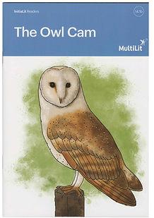 The Owl Cam.jpg