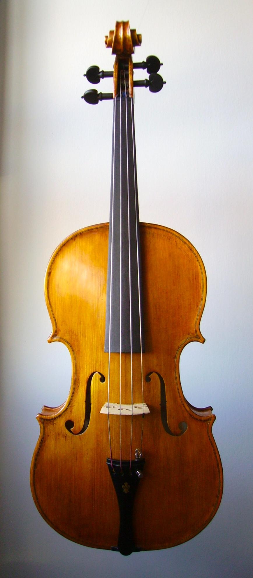 Viola 41 cm