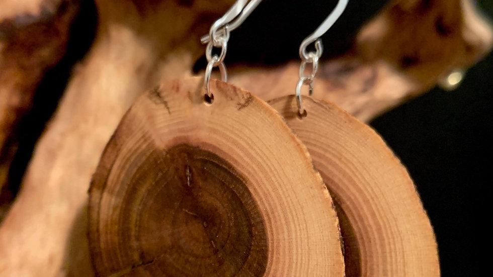 Big Aspen Wooden Circles