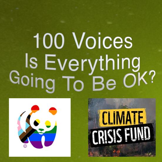 100 Voices Project