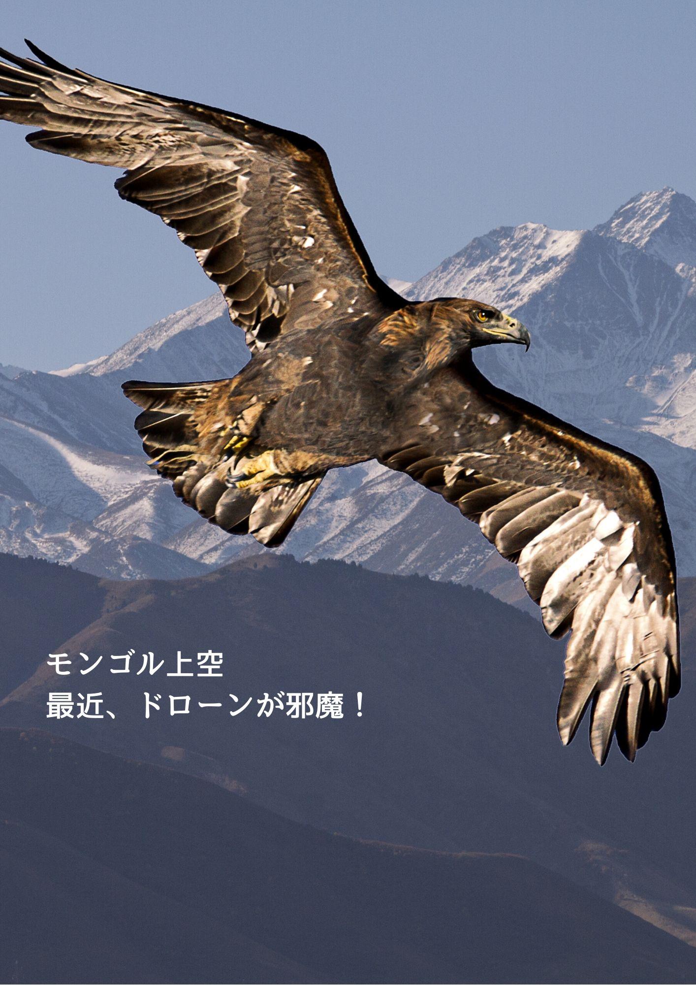 モンゴルの上空