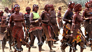 Hamer Tribe of The Omo Valley
