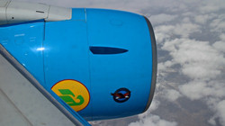 Uzbekistan Airways Flight Reports