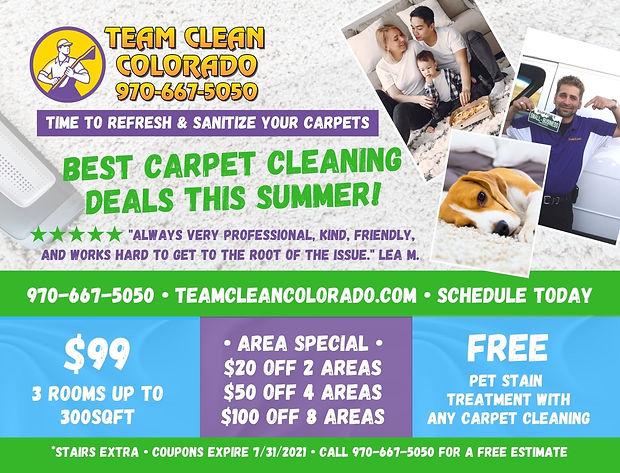 Team Clean mailers.jpg