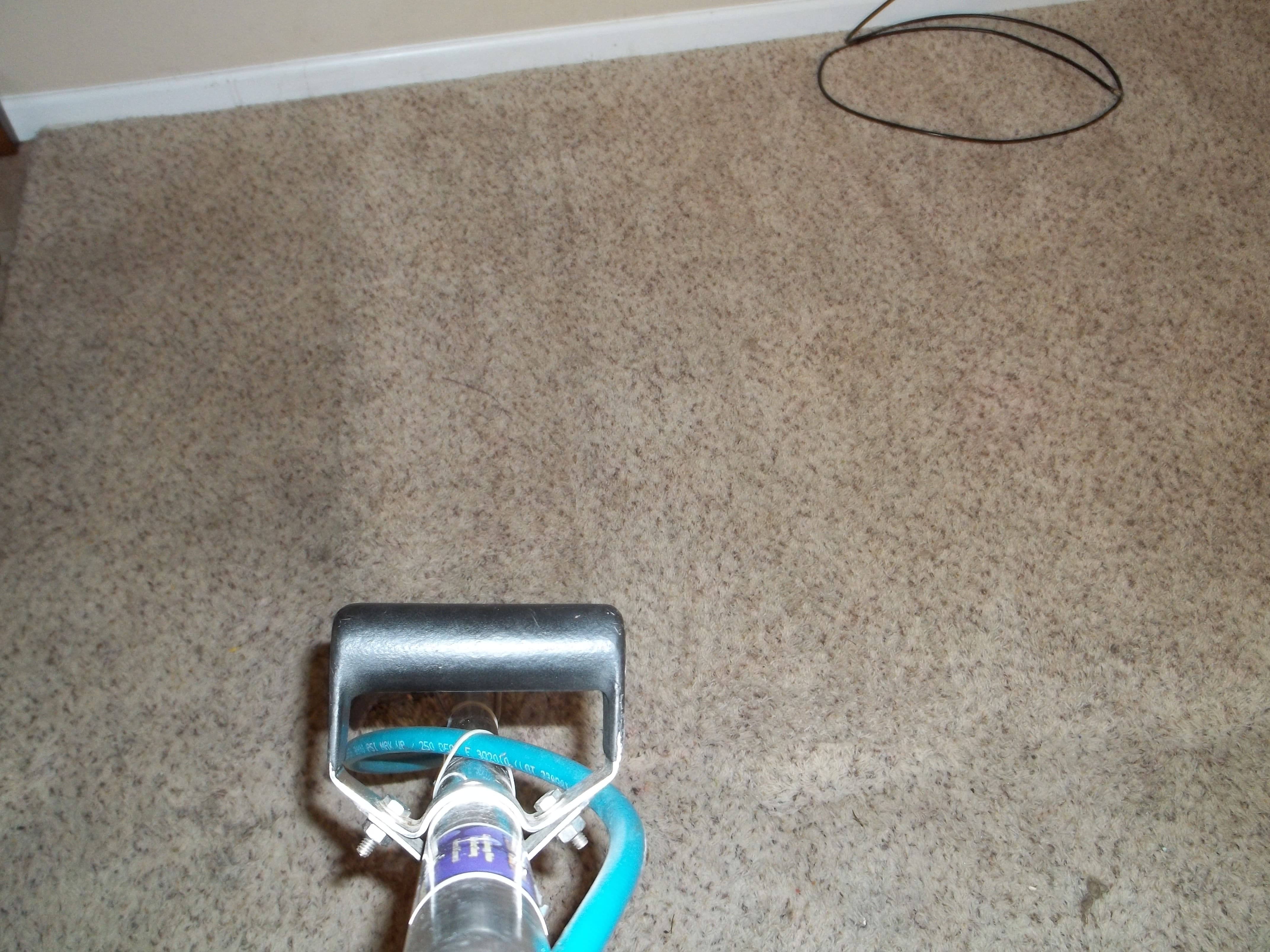 carpeting-cleaning-tan-Team-Clean-Colorado-Residue-Free-Carpet-Cleaning-Loveland