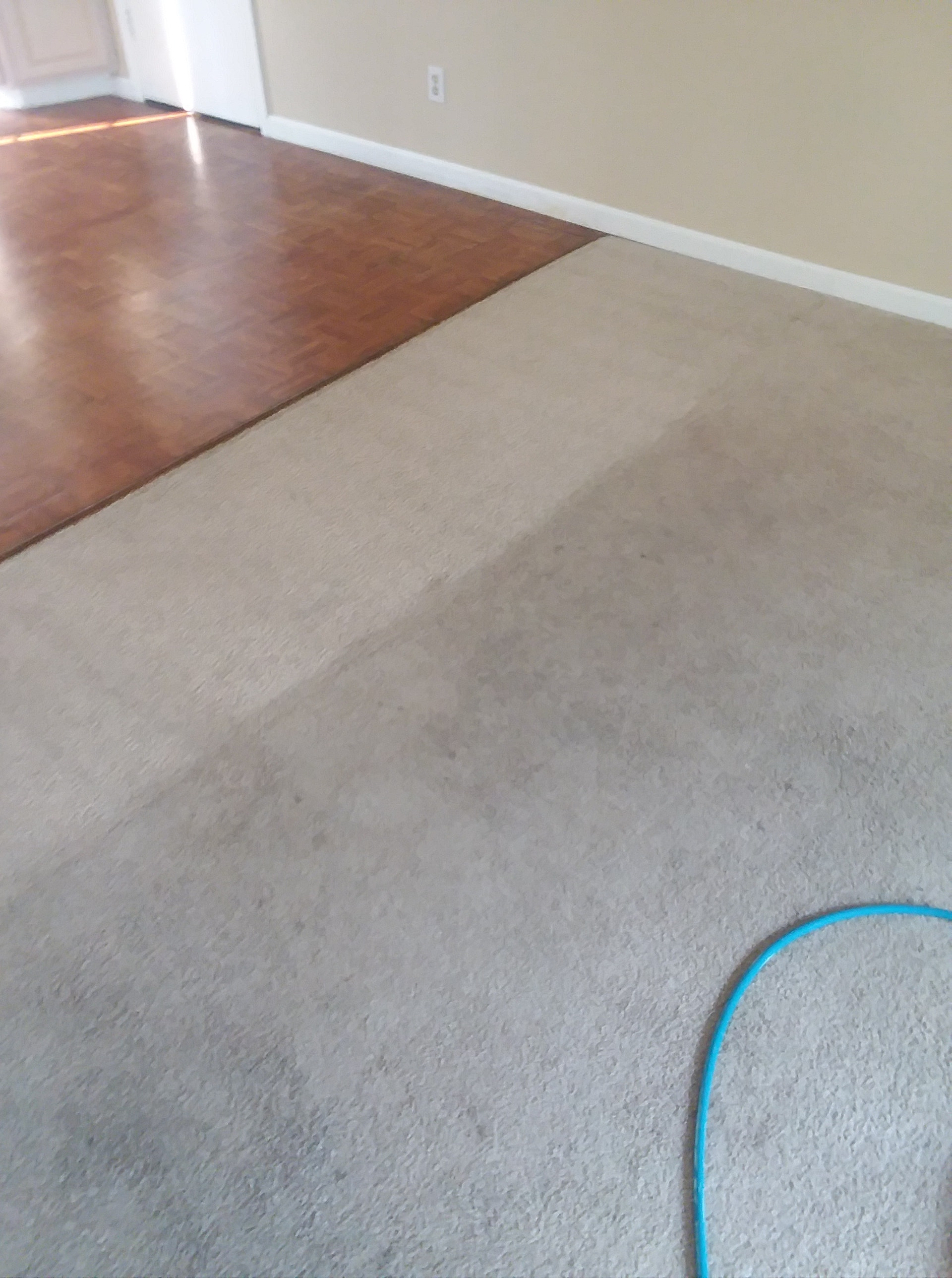 before-after-clean-carpets-Team-Clean-Colorado-Residue-Free-Carpet-Cleaning-Loveland