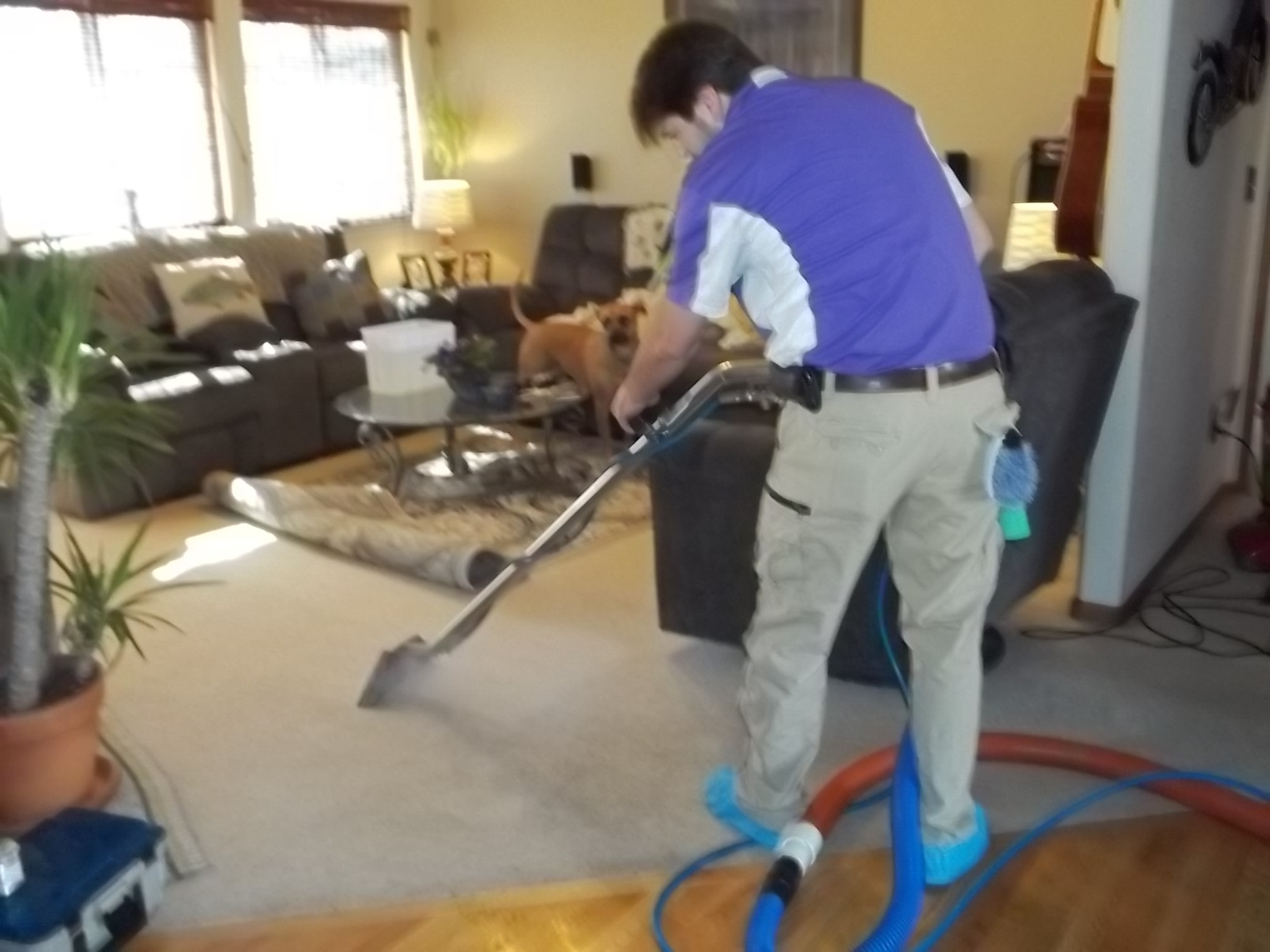 Team-Clean-Colorado-Residue-Free-Carpet-Cleaning-Matt-Loveland.JPG