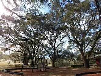 layayette oaks playground.png