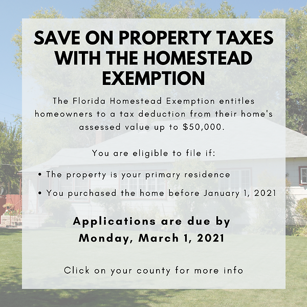 Web Graphic - homestead exemption.png
