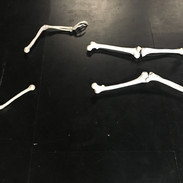 Résidence Odradek janvier 21 - Martin le squelette