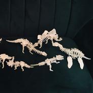 Est-ce qu'il existe un paradis des dinosaures ?