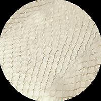 Salmon Skin.png